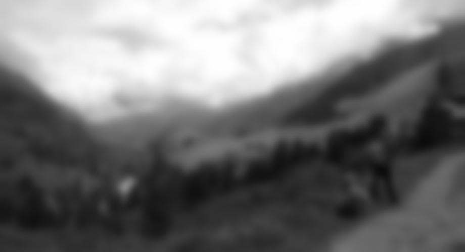 Zustieg - kurz nach der Zirbenwaldhütte