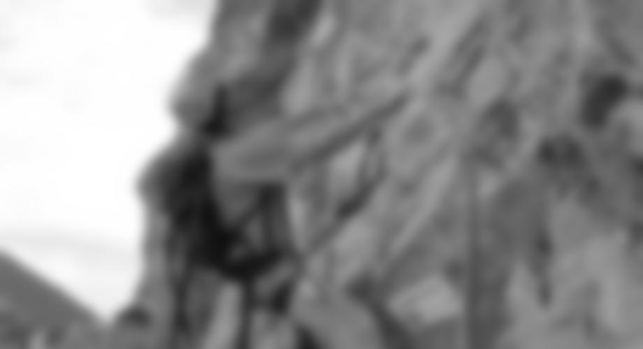 Bergführerplatte