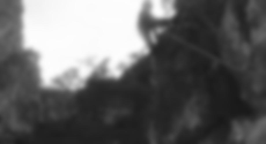 Am sog. Schweinebauch-Überhang