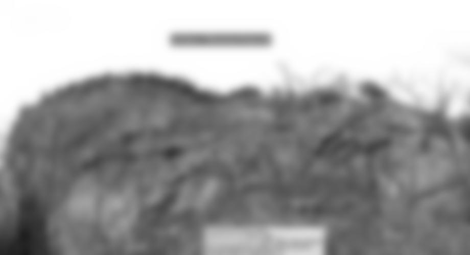Die Plattenzone am linken Rand der Unteren Diesbachwand.