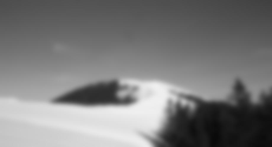 Westrücken der Wildalpe mit Gipfel