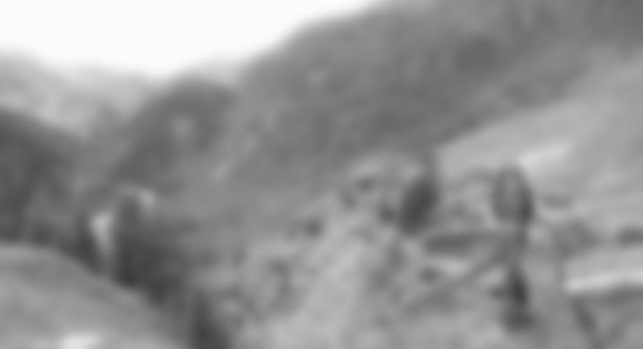 Abstieg zur Zirbenwaldhütte