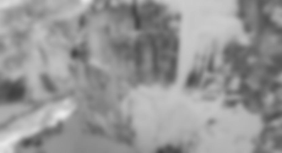 Die Erstbegeher Albert Leichtfried und Benedikt Purner in der 3ten Seillänge; Foto: Elias Holzknecht/woodslave productions