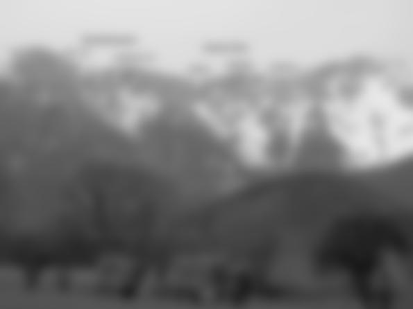 Übersicht Schneidergraben Krumme Ries