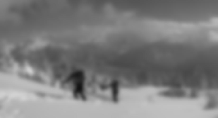 Tolles Panorama in die Zillertaler Alpen.