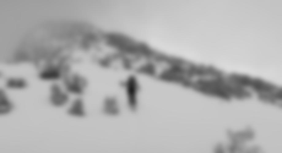 Der kurze, steilere Gipfelhang.