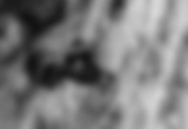 Sean McColl in Hubble, 8c+