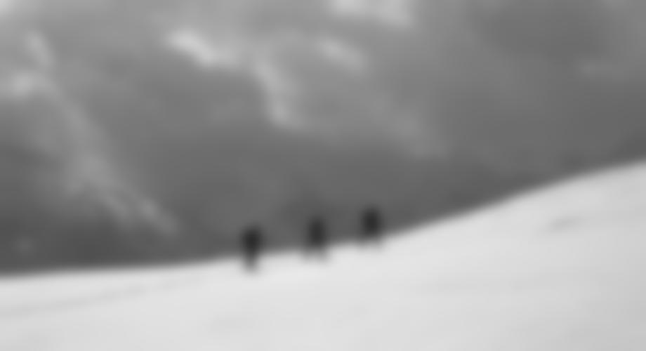 im Gipfelbereich des Leitner Berges.