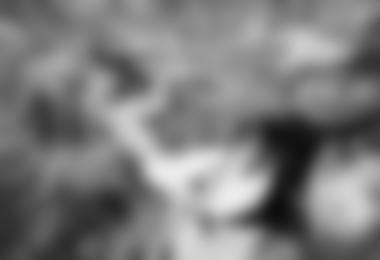 zweite Crux: die Mini-Seitleiste voll zugeknallt weiter zu einer abschüssigen Leiste - dran bleiben beim Schwung abfangen ...© Christina Dalla-Bona