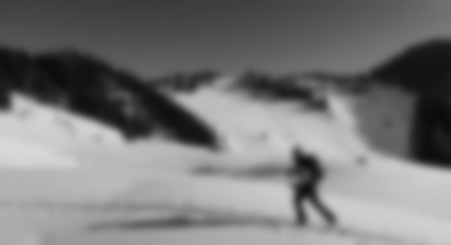 Etwas oberhalb der Pletzachalm - über den Rücken im Hintergrund kann man zur Skipiste gehen (besser dort ins Tal fahren als auf dem Forstweg).