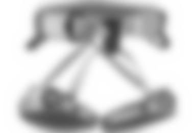 """Gurt Turtle Vario C - Betroffen sind Chargennummern """"HC (0)1"""" und """"GC 008 2008"""" bzw. """"GC 009 2008"""""""