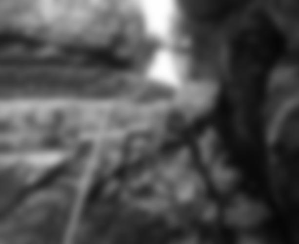 Der Kamin in der 3. SL erweckt einen wilden Eindruck, ist jedoch gutmütig. (Foto: W. Kühberger)