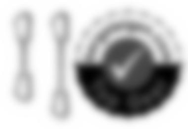 Photon Expressschlingen in 11 cm und 18 cm - grundsolide gebaut und preiswert, deshalb bergsteigen.com Top Gear!