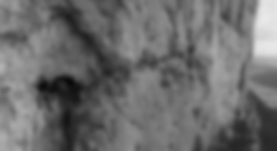 3. Seillänge, in der exponierten Querung