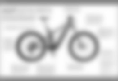 Kaufguide: E-Mountainbikes (Foto: Alpin)