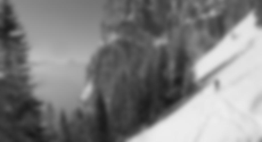 enlich quert man aus dem steilen Graben in den flacheren Wald Richtung Krempelhütte