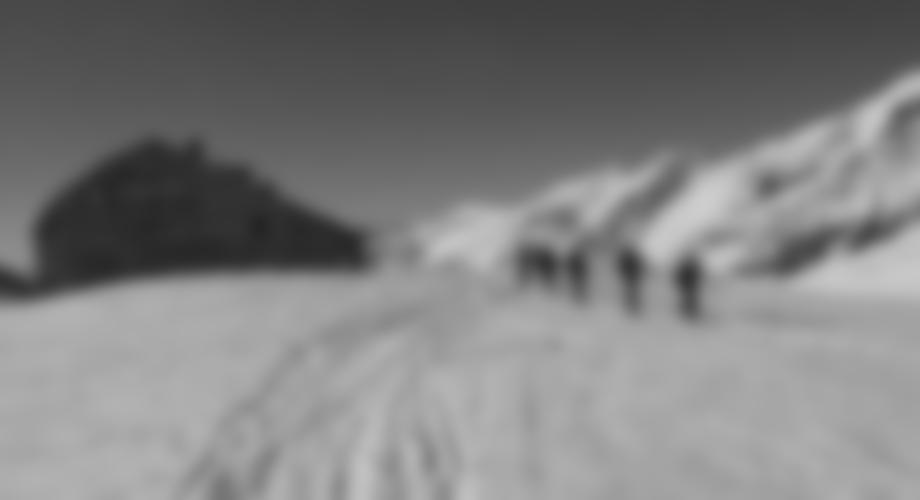 Die Tourengruppe bei der Oberwalderhütte