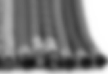 ALPIN Basic: Seile
