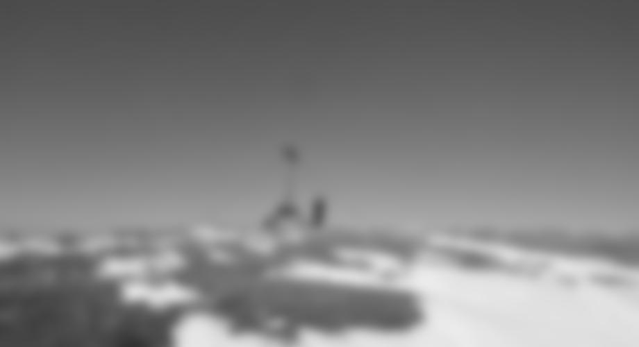 Gipfel Wildalpe